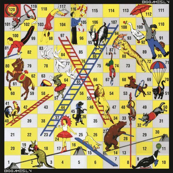 Circus (3x3m) or (2x2m)